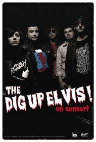 diguptour2009.jpg