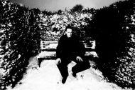 robin_snowbench.jpg