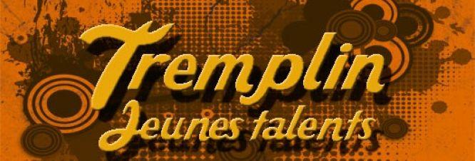 tremplin_bouillon.jpg
