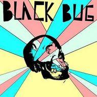 black-bug.jpg