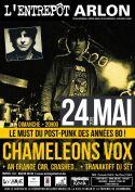 chameleons_24.05.15.jpg